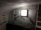 Leeds Cellar Conversion - Dark Unusable Cellar to Dry Storage